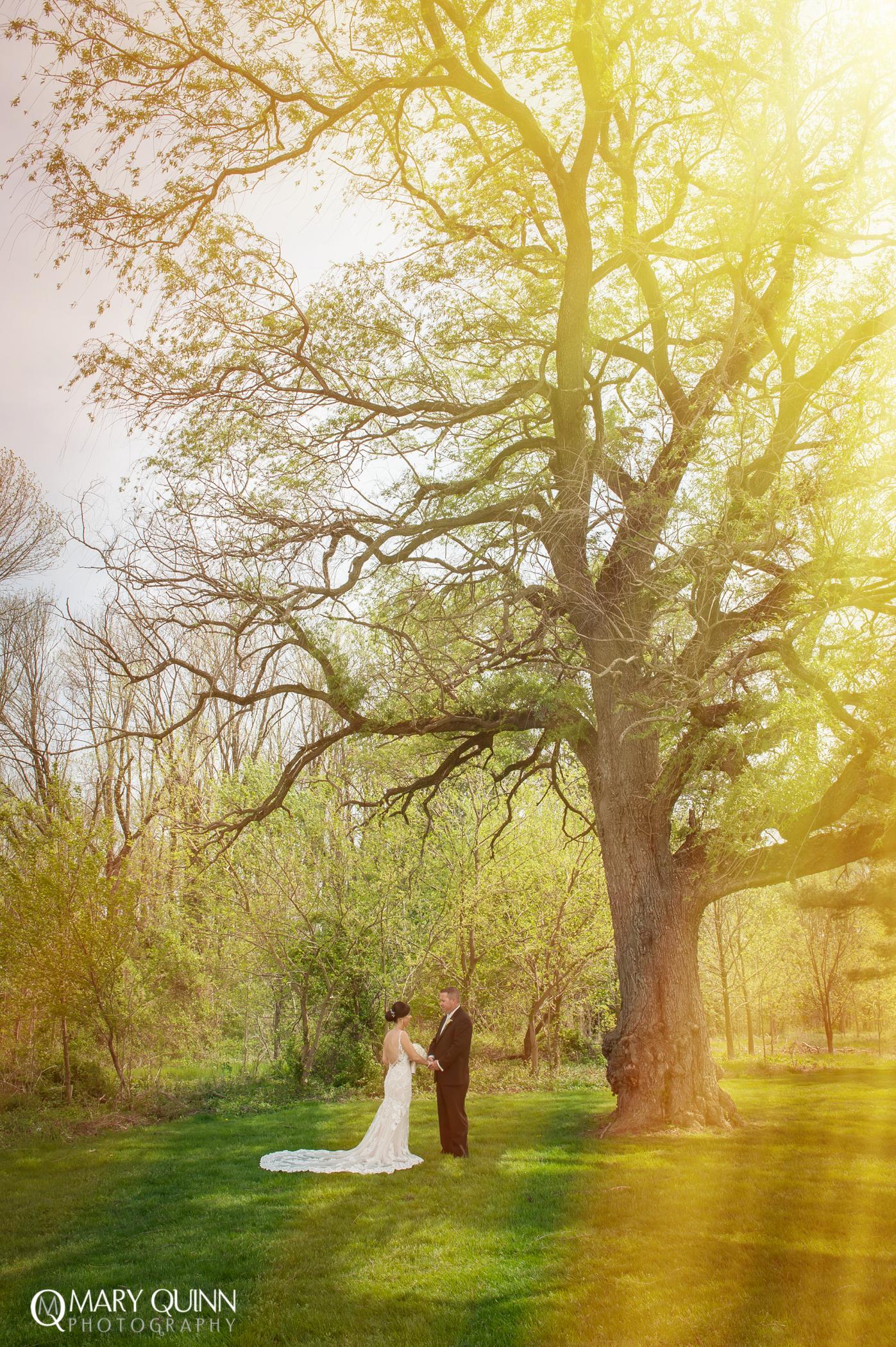 South Jersey Wedding Photo