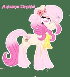 characterautumnorchid