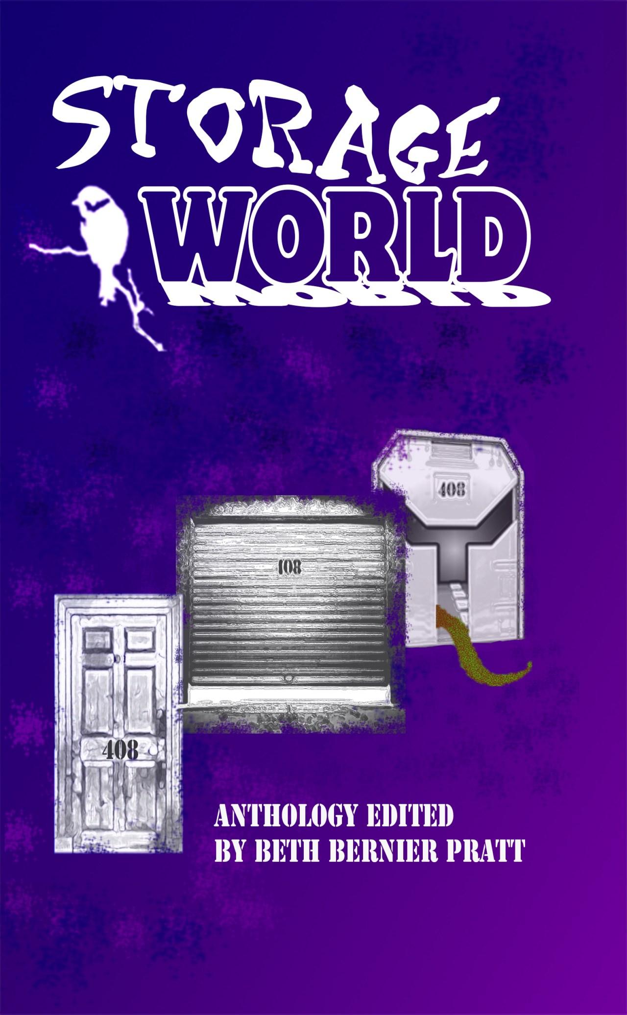 storage world cover 5