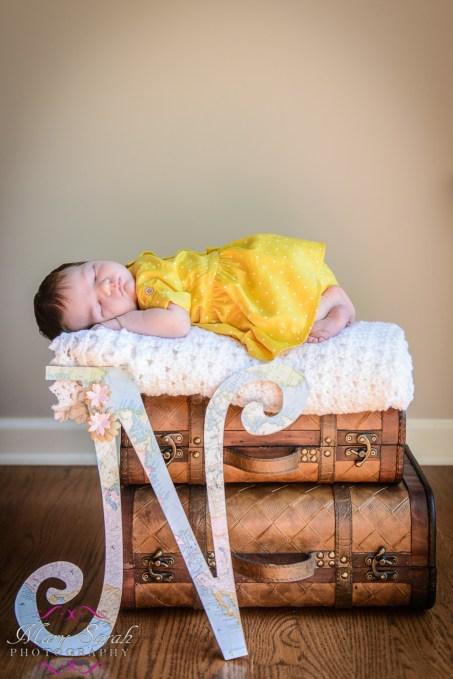 Frederick MD newborn photographer (5)
