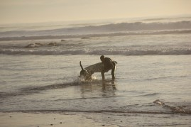 Hunter greeting Miles coming out of the surf