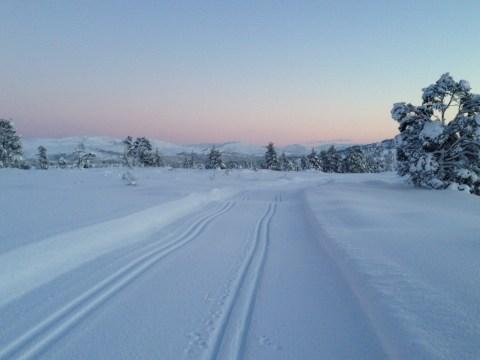 Skispor Nordmarka