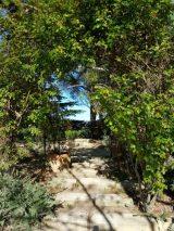 Rocher des Doms garden. Secret garden?