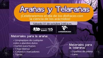 AranasTelaranas31Oct2020