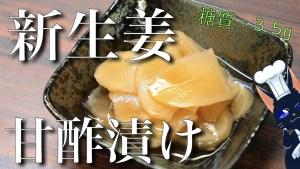 新生姜 甘酢漬け ガリ レシピ