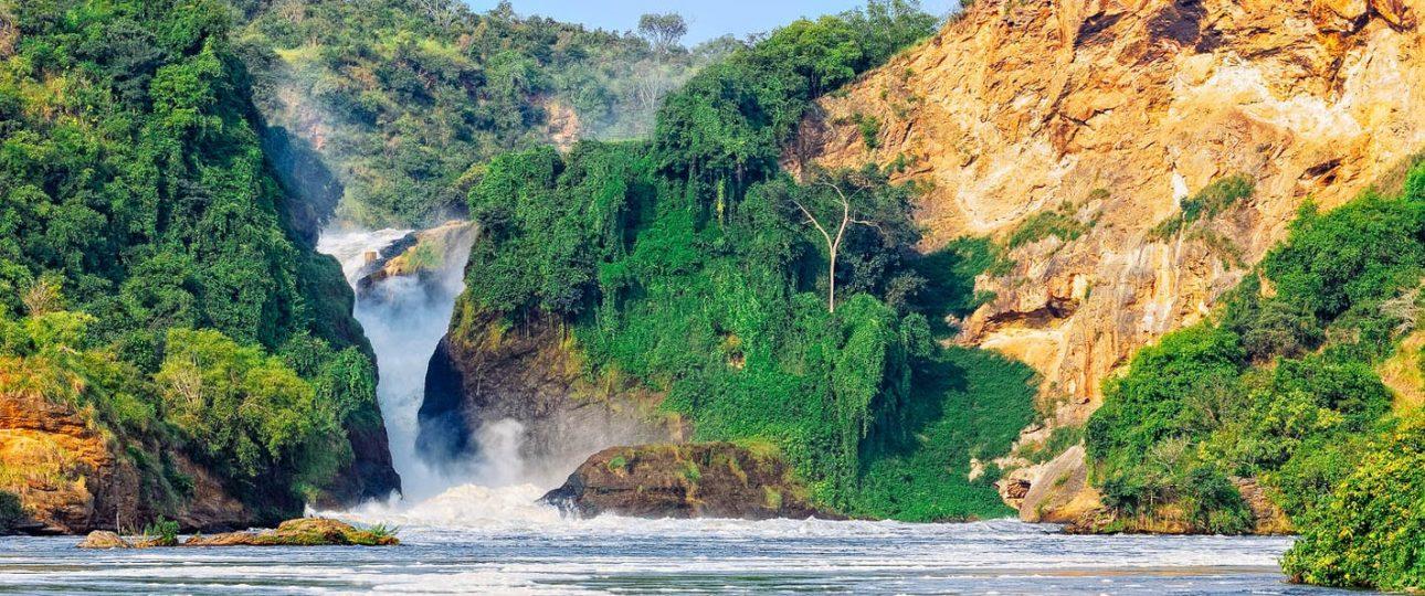 safari in uganda murchison falls