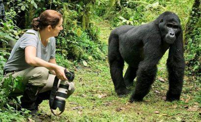 3 day gorilla tracking Rwanda