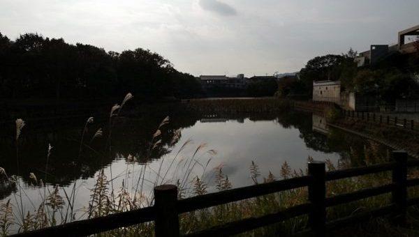 ジョギングコースと池