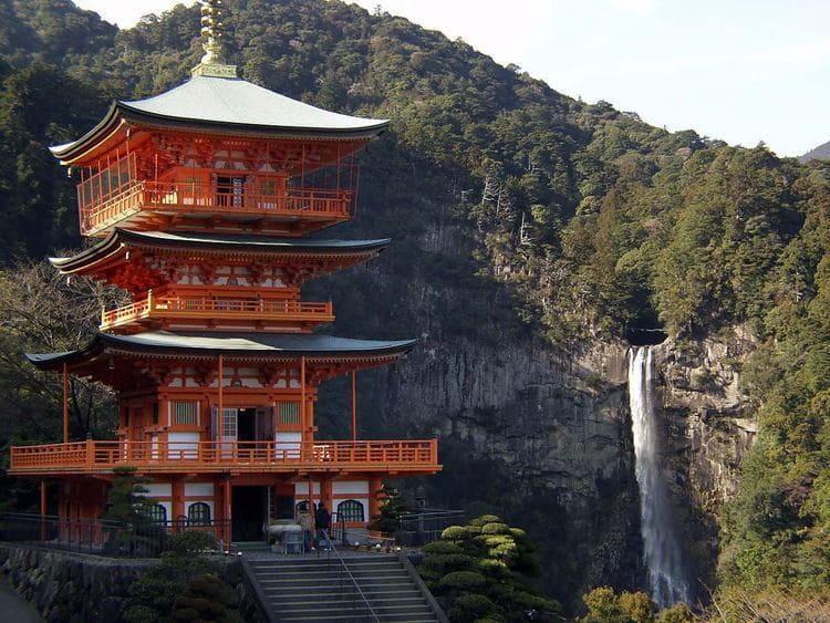 Пожить в буддийском  Храме.