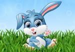 Cesur Tavşan