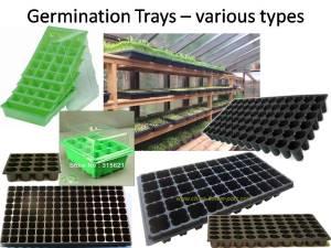 germination-trays
