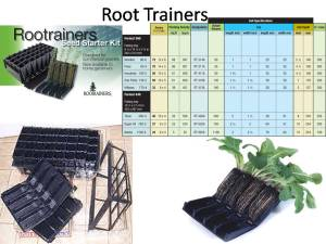 root-trainers