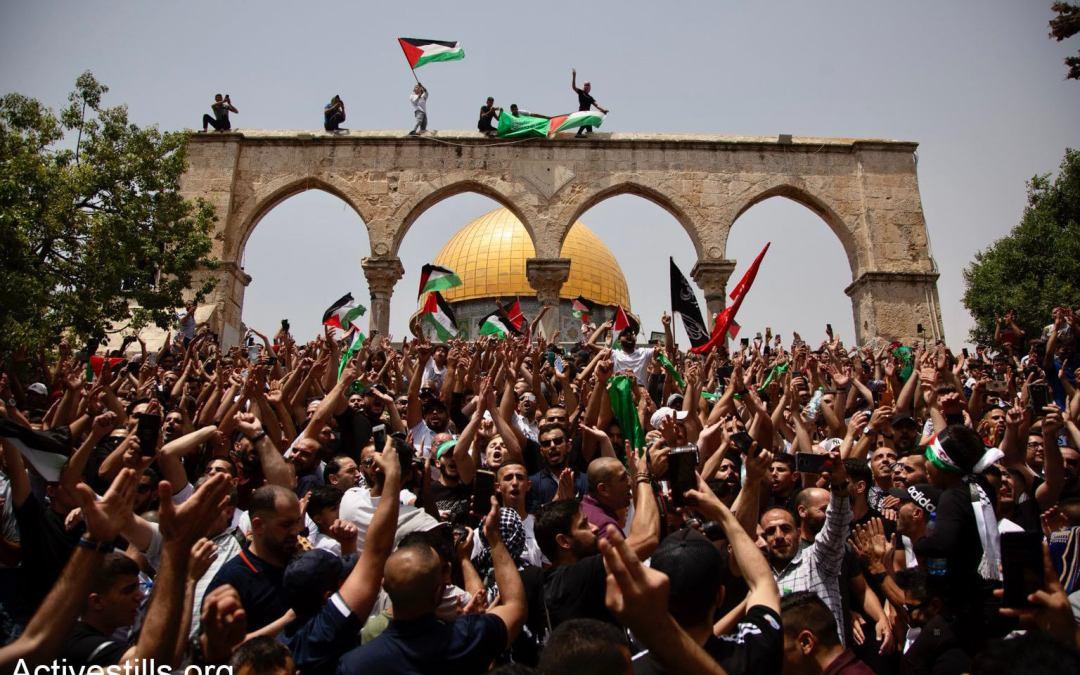 """ملف """"انتفاضة القدس"""" — بهاء الزريعي"""