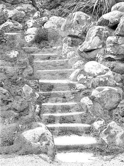 Steps in the Japanese Gardens at Powerscourt, Ireland - B/W