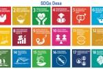 Pemutakhiran IDM 2021 Berbasis SDGs Desa