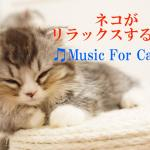 【Music For Cats】ネコがリラックスする音楽