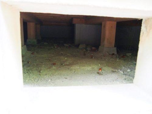 モリコロパークサツキとメイの家の床下に落ちているどんぐり