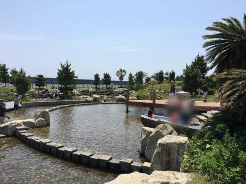 焼津ふぃしゅーなの岩に囲まれたプールで遊ぶ子供たち