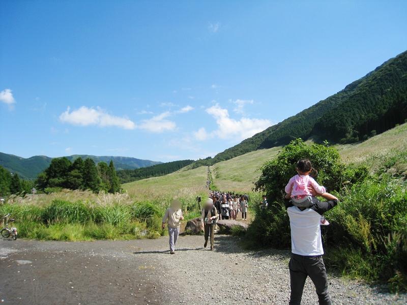 すすき畑とその間を歩く人の列