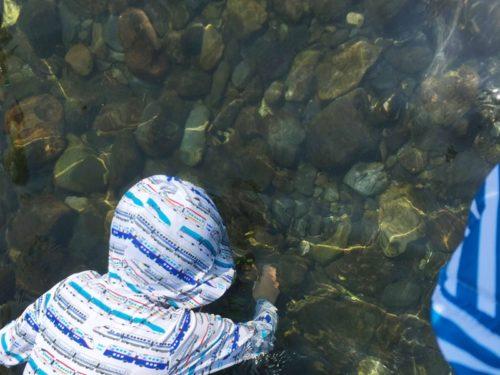 うしづま水辺の楽校の水の中をのぞく子供と多くの石