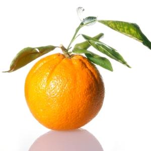 10 Warna Paling Mempengaruhi Marketing - Warna-Orange-pada-Web-Desain-dan-Grafis-10-warna-yang-mempengaruhi-sales-dan-marketing