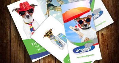 Template Desain Brosur Format PSD EPS dan Corel Gratis Download