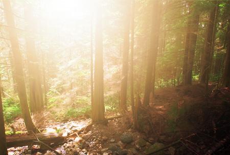 Tutorial Photoshop Membuat Effek Pencahayaan - Tutorial-Photoshop-Membuat-Efek-Cahaya-Pagi-Hari
