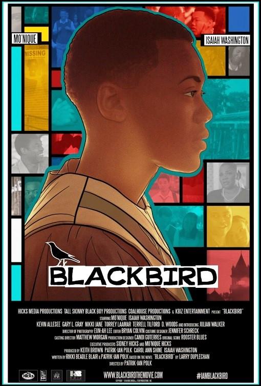 Poster Sebagai Sarana Informasi - best movie poster 2015 - poster - Blackbird
