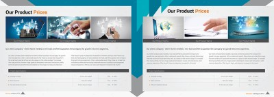 Corporate Brochure Company Profile 21 b