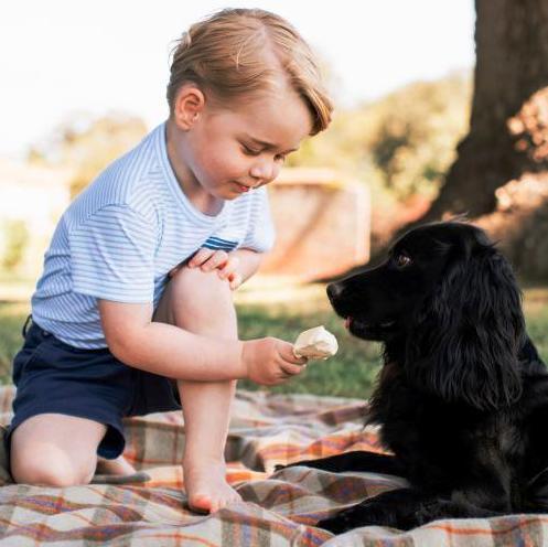 Kontroversi Foto Pangeran George Memberi Es Krim Anjingnya