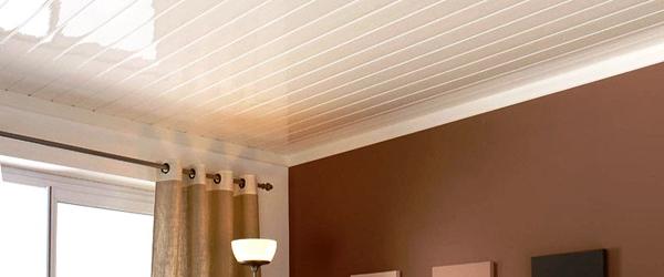 Penggunaan Plafond PVC Untuk Hunian Berkonsep Minimalis