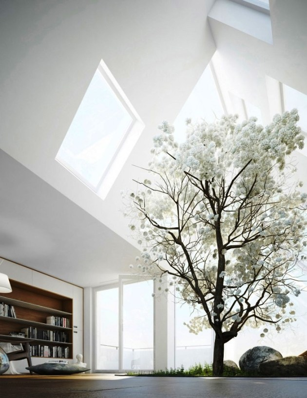 aneka jenis tanaman indoor dan outdoor