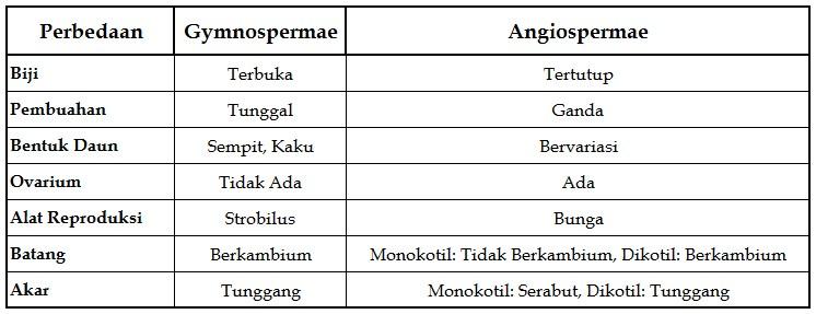 perbedaan-gymnospermae-dan-angiospermae dalam bentuk tabel
