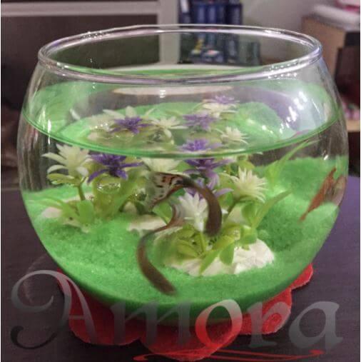 Jual Aquarium Mini Harga Paling Murah Recomended Seller 085641243336