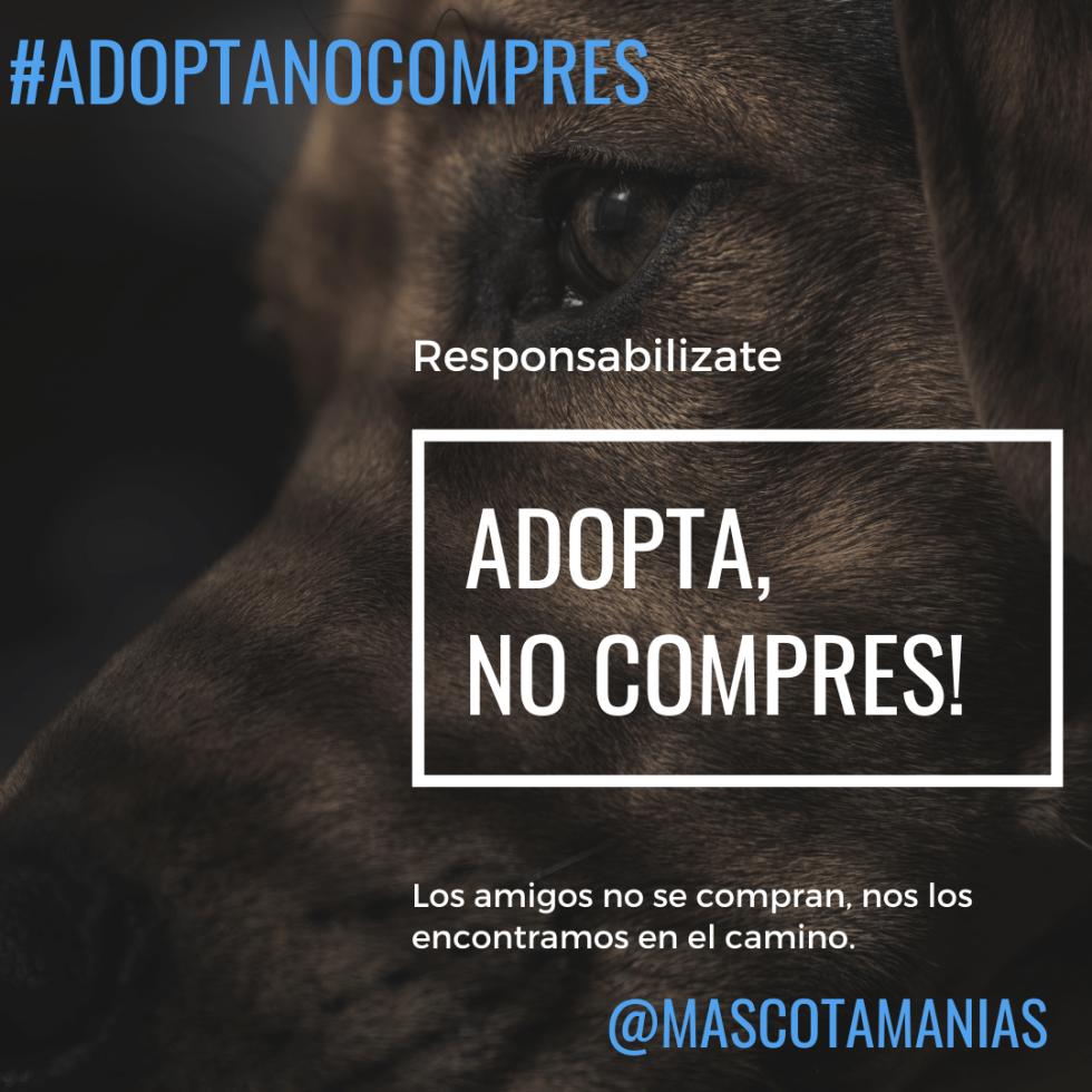 #adoptaNOcompres