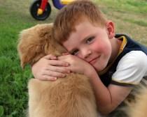 ¿La tos de las perreras se transmite a los humanos? - HeelVet