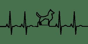 Propiedades relajantes del espino blanco: sistema nervioso mascotas - HeelVet