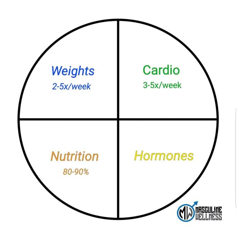 Success-Pie-Chart-Mens-Fitness-Program-101