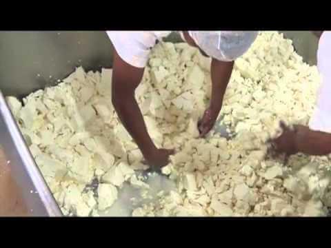 chapingo cheese