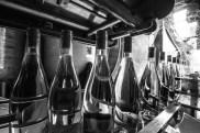 MAS DES CAPRICES 2016 , mise en bouteille crus 2015 photo Serge Briez®capmediations2016