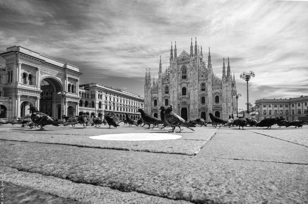 IO MILANO, PIazza Duomo con piccioni © Carlo Mari