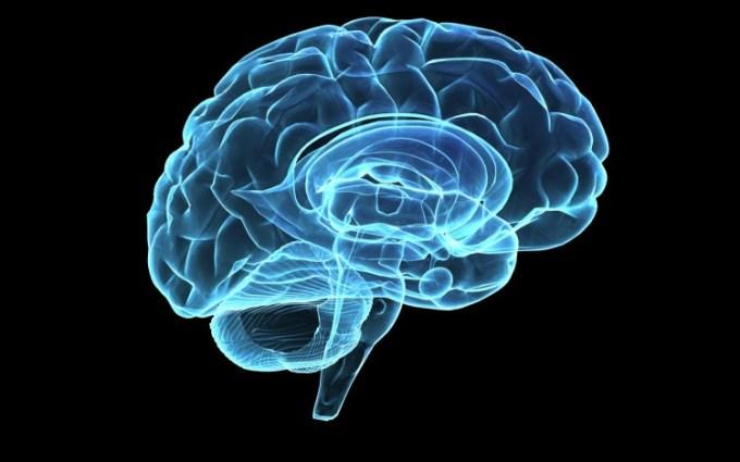 Blueprint Otak