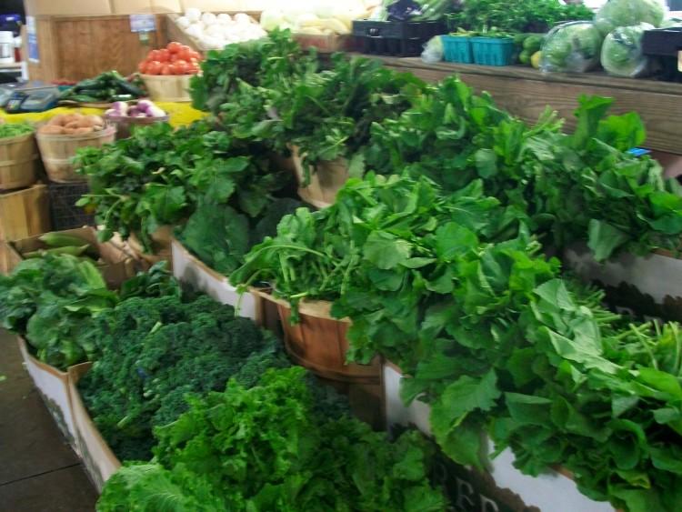 Macammacam Sayuran Berwarna Hijau Kaya Manfaat  Mas Fikr