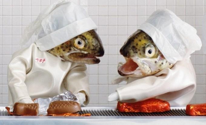 Karya Seni Ikan Bikin Coklat Ikan
