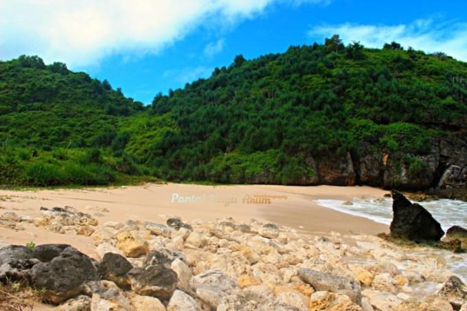 Pantai Kayu Arum Gunungkidul