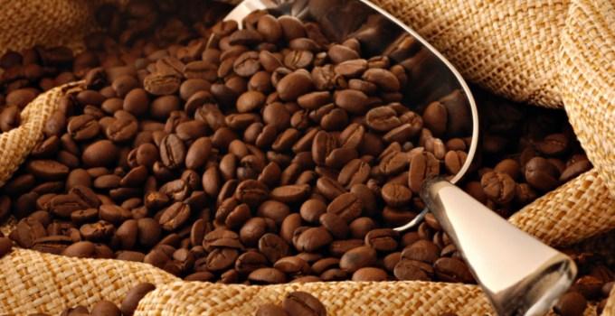 Biji kopi