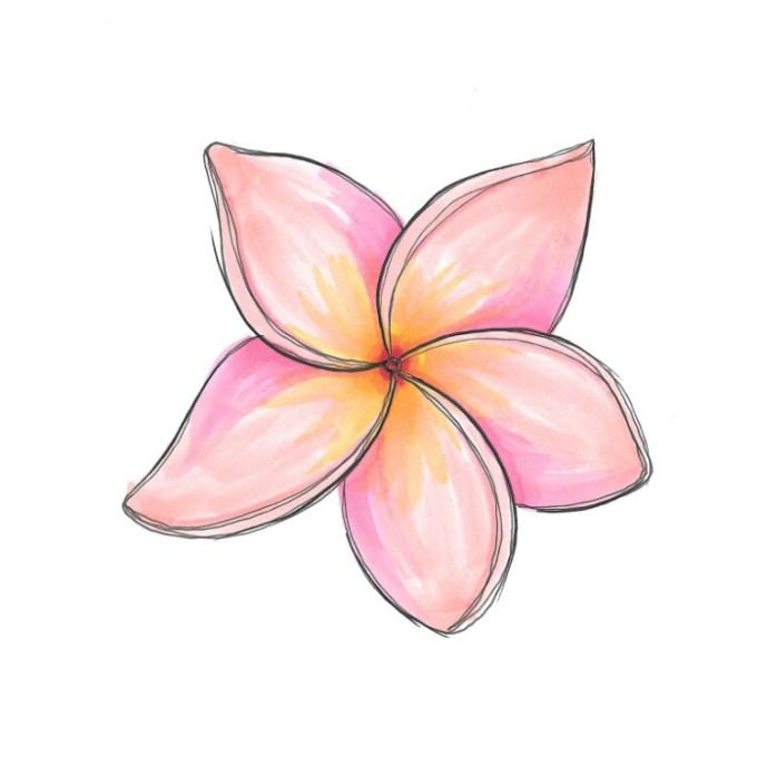 Bunga kamboja ungu