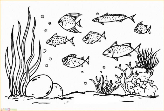 Sketsa pemandangan bawah laut