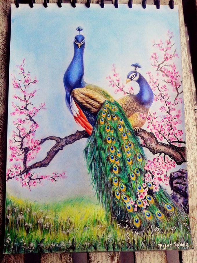 lukisan merak berwarna