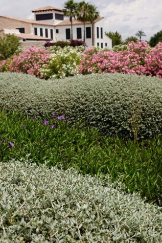 Mediterranean-villa-with-a-Mashamba-design-garden